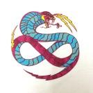 acid cobra close